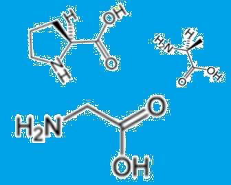 コラーゲン・アミノ酸2