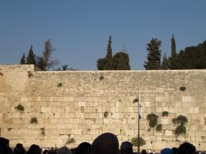 嘆きの壁(イスラエル)